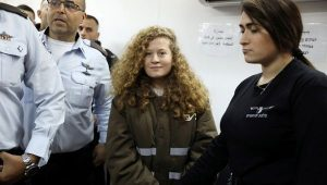 Ahed Tamimi's lawyer: 'Her case is making people see the occupation again'